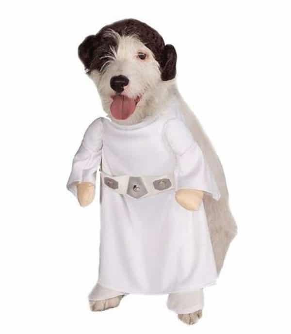 target_PrincessLeia  sc 1 st  Dog Files & Still Time For Doggie Halloween Costumes! - Dog Files