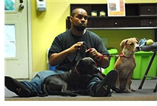 Army Capt. Lawrence Minnis sits with his two adopted pit bulls.