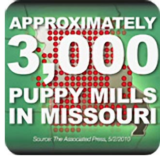 Democracy Dead In Missouri As Compromised Dog Breeding Measure Rushed Into Law