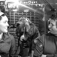 Hero Chicago Firefighter Brings Dogs Back To Life