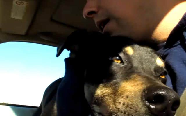 The Rescue Of Rocky & Libby: Heartwarming Video