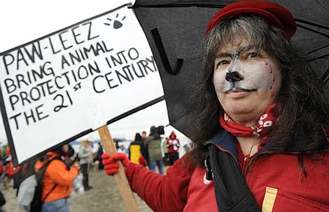 British Columbia To Implement Tougher Animal Cruelty Laws After Sled-Dog Culling