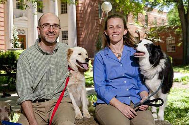 Landmark Study Reveals Breed-Specific Causes of Death in Dogs