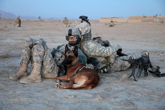 GSD rests with Soldier