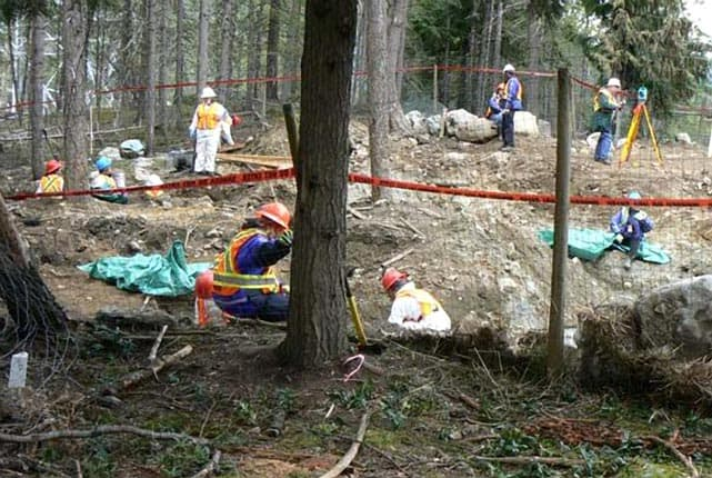 Famed Forensic Anthropologist Assisting In Whistler Sled Dog Massacre Exhumations