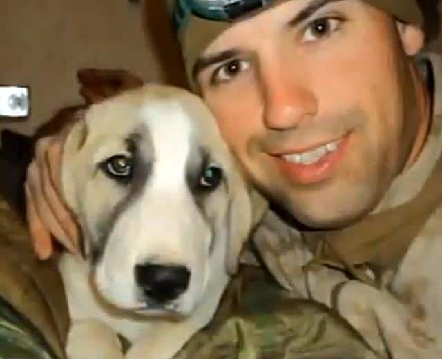 School Kids Team Up With Marine To Save Afghanistan Puppy: Heartwarming Video