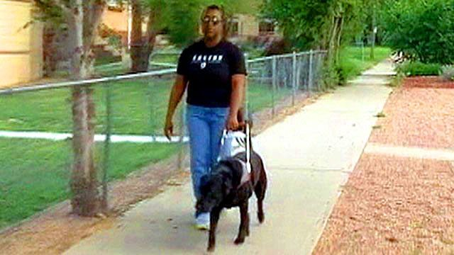 Allergic Colorado Cabbie Fined For Forcing Service Dog To Ride In Trunk