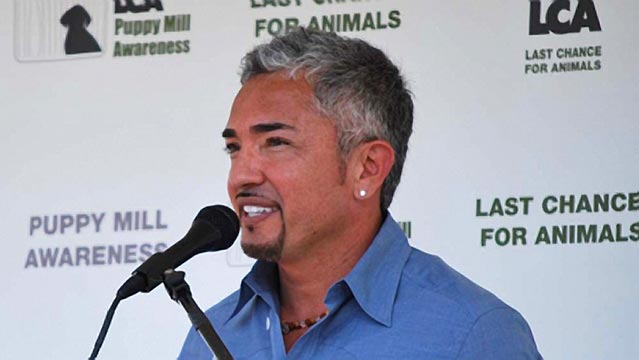 Cesar Millan Speaks Out To Hispanic Community