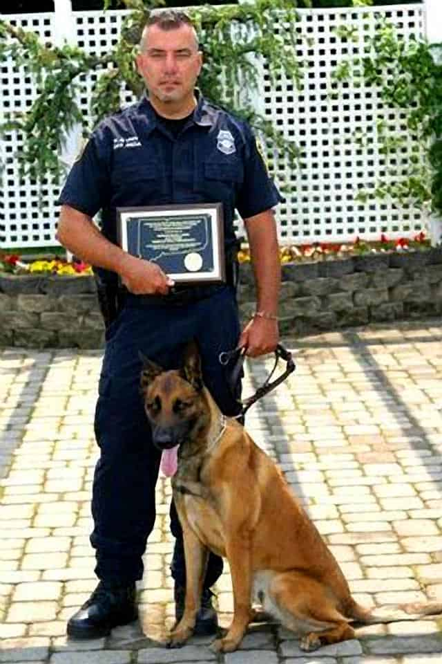 Stabbed Connecticut Police Dog To Return to Duty