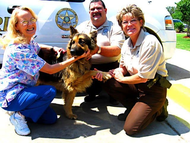 Medical Service Dog Is Woman's Guardian Angel
