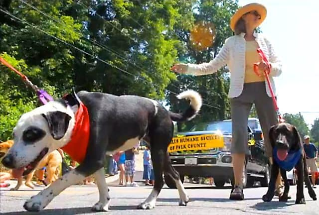 North Carolina Town Holds Annual Coon Dog Day