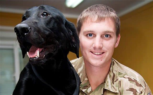 UK Dog Of War Saved By Soldiers Returns To The Front Line