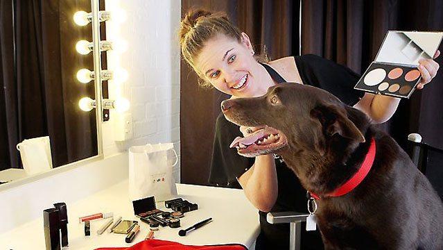 Koko, Australia's Canine Star, Enjoys The Good Life