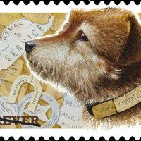 Dog Postage Stamp
