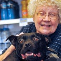 grandma and dog fend off robber