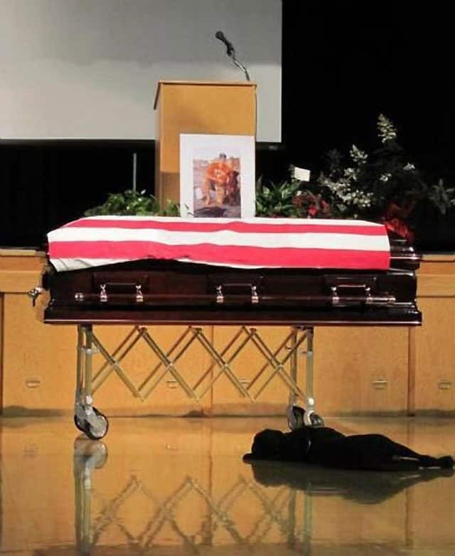 Dog Lays Next To Navy Seal Coffin 1