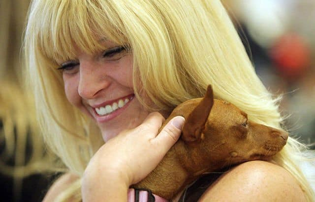 Utah Family Reunited With Dog Found In California After 8 Months