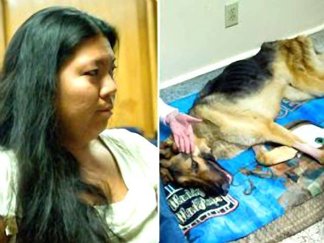 Starved-Dog Case Ends With Misdemeanor In California