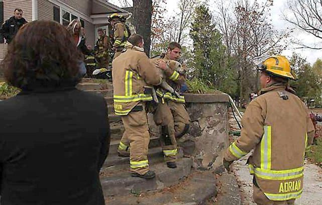 wisconsin firefighters save dog 03