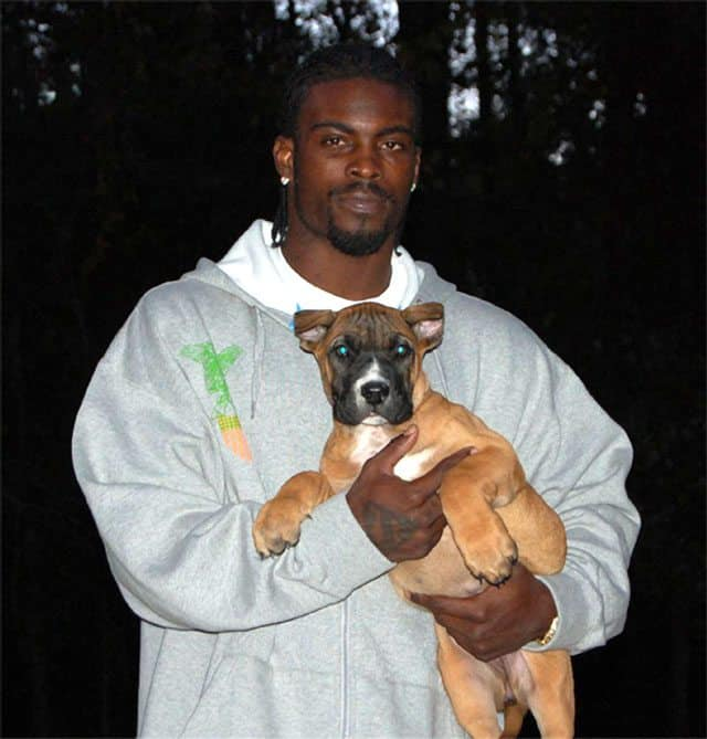 Michael Vick Tops List Of Most Disliked NFL Players