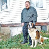 st.bernard protects new family
