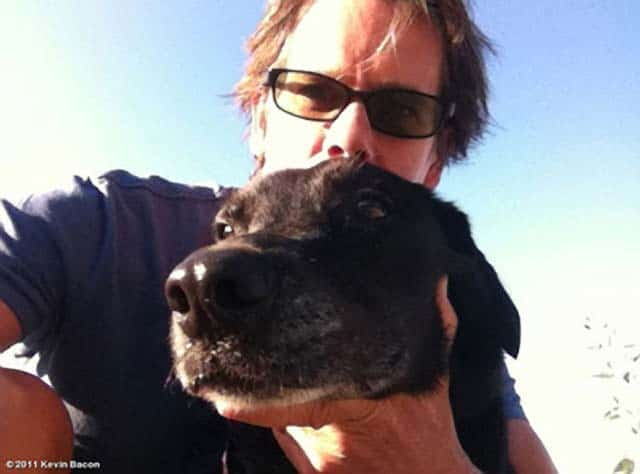 Kevin Bacon And Wife, Kyra Sedgwick Mourning Loss Of Beloved Dog