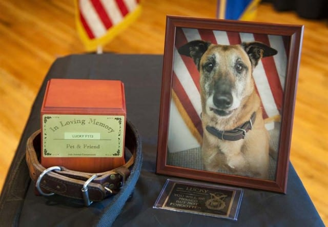 Memorial Service for Lucky.