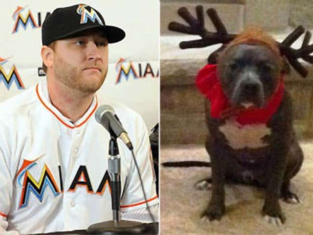 Miami Pitbull Ban Forces Major League Baseball's Mark Buehrle & Family To Live Elsewhere