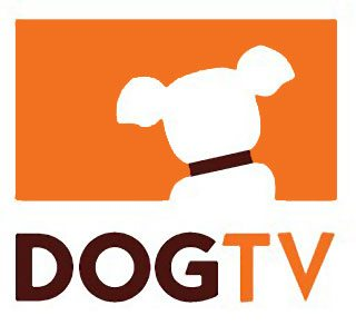 DOGTV: A New Cable Channel That's Gone To The Dogs