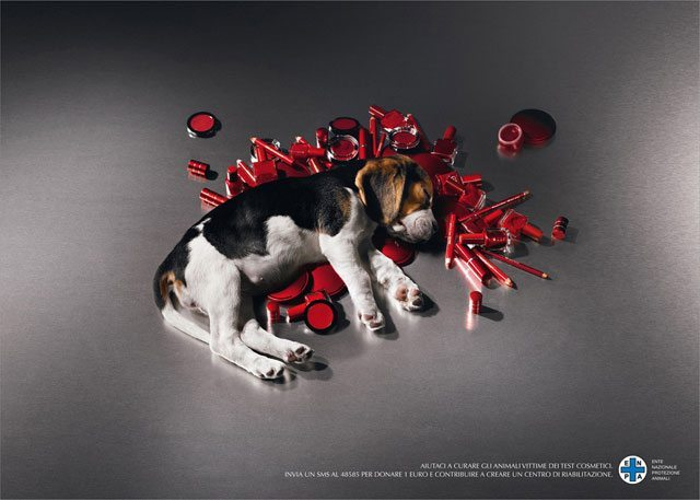 Animal Testing Resumes For Avon, Mary Kay, And Estee Lauder