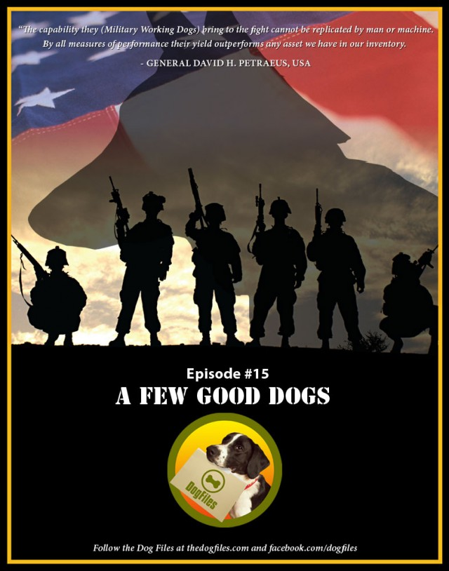 A-Few-Good-Dogs-Memorial