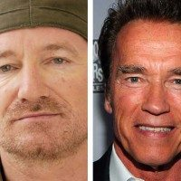 U2's Bono and Arnold Schwarzenegger. What do they have to do with dogs? Read and find out!