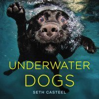 Photographer Seth Casteel's new book, Underwater Dogs