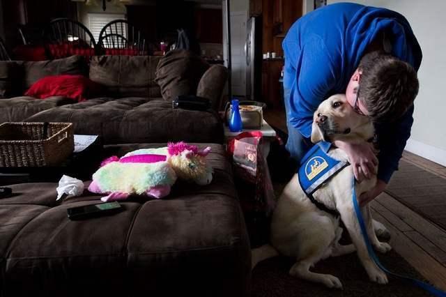 Autism Assistance Dog Changes Utah Boy's Life