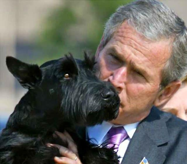 President George W. Bush's Dog Barney Passes Away