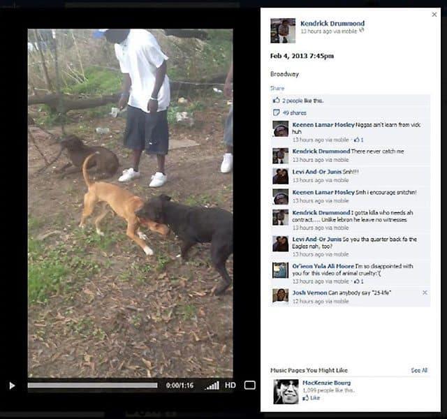 dogfight facebook1