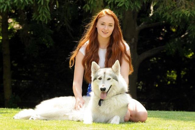 Sophie_wolf2