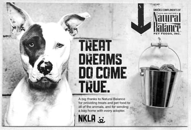Natural Balance Partners With Best Friends New LA Shelter