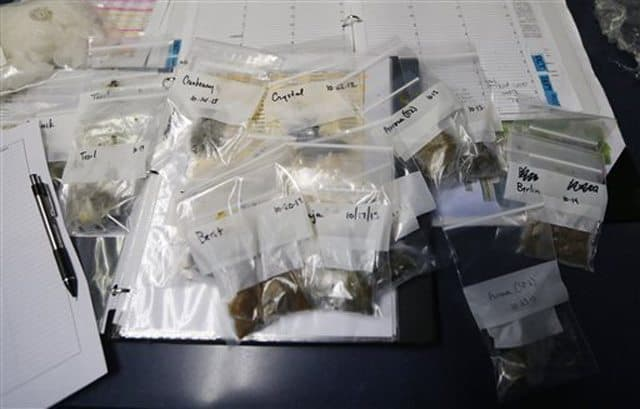 Stool samples were flown in from around the country.