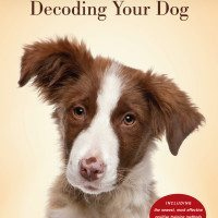 New Book, Decoding Your Dog, Will Help Give You And Your Pup A Happier Life!
