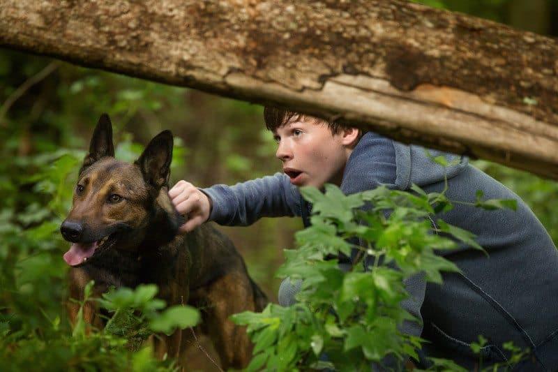 """Max"" stars Josh Wiggins as Justin Wincott, Lauren Graham (TV's ""Parenthood"") as his mom, Pamela, and Oscar nominee Thomas Haden Church (""Sideways"") as his dad, Ray."