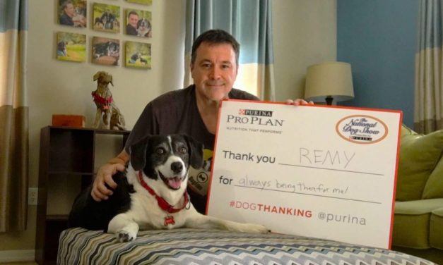 Share This Post & Purina Will Donate $1 To The AKC Canine Health Foundation!