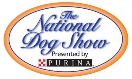 Purina Will Donate $1 Per Post To The Canine Health Foundation!