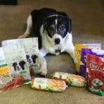 I Fed My Dog Freshpet Dog Food For 14 Days!