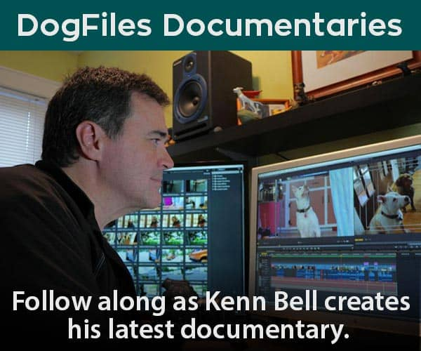 Dog Files Documentaries